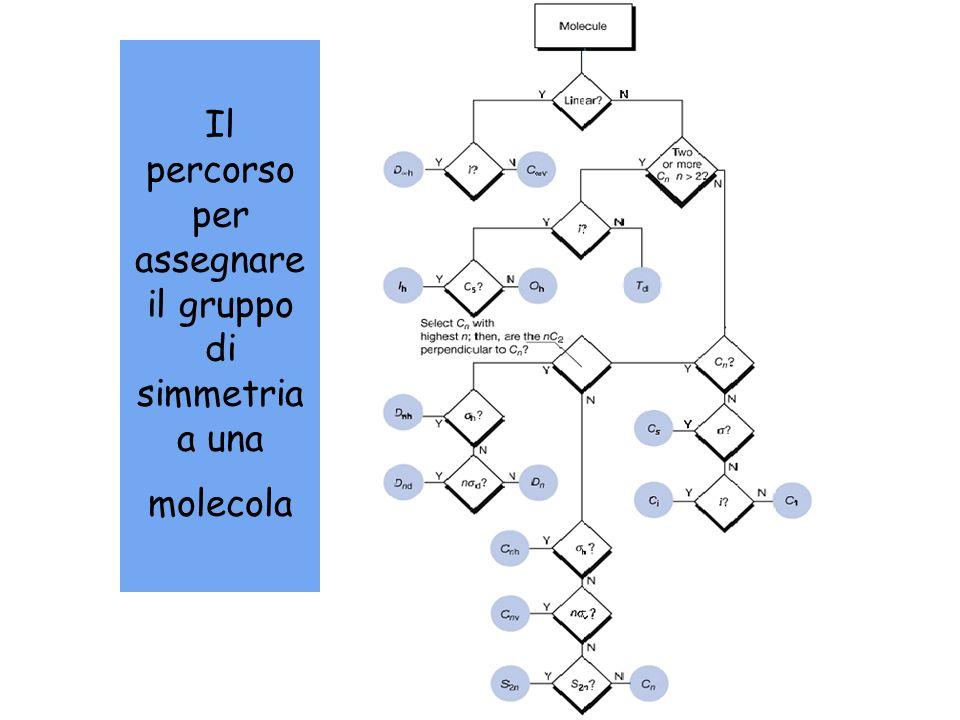 Il percorso per assegnare il gruppo di simmetria a una molecola