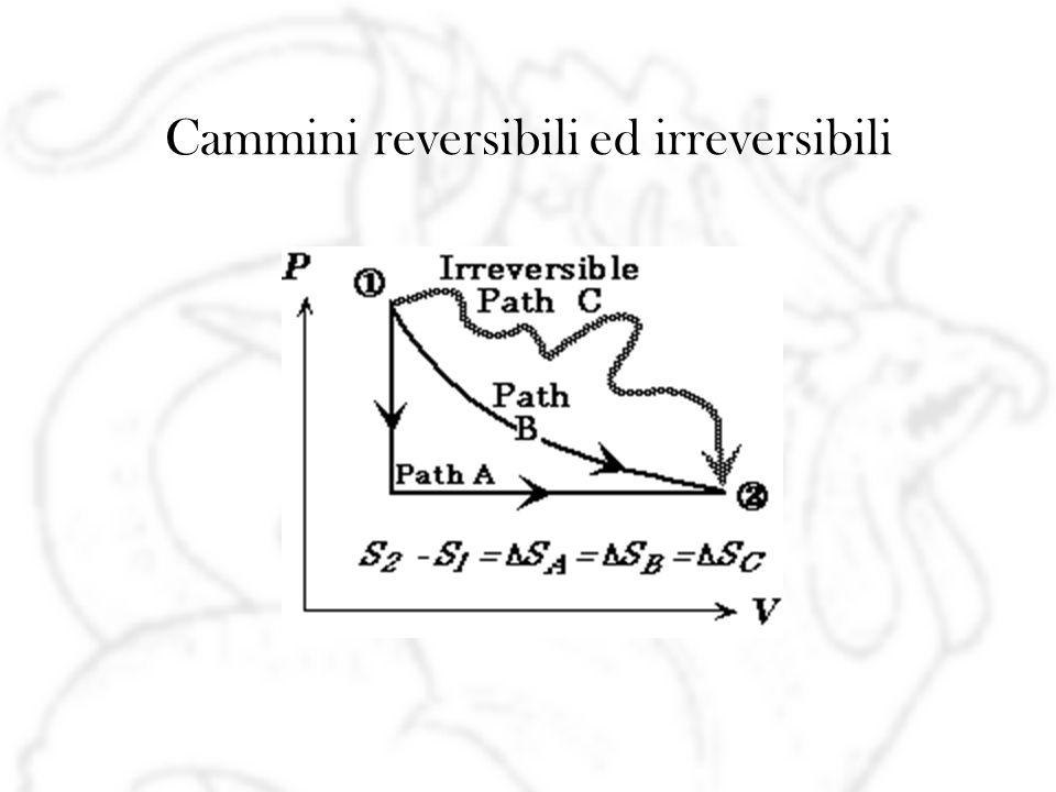 Cammini reversibili ed irreversibili