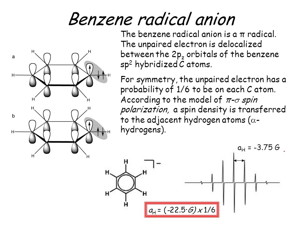 The benzene radical anion is a π radical. The unpaired electron is delocalized between the 2p z orbitals of the benzene sp 2 hybridized C atoms. For s
