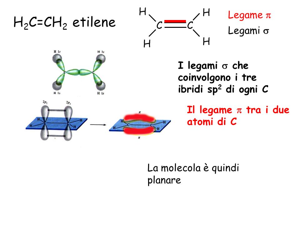 H 2 C=CH 2 etilene I legami che coinvolgono i tre ibridi sp 2 di ogni C Il legame tra i due atomi di C La molecola è quindi planare CC H H H H Legami