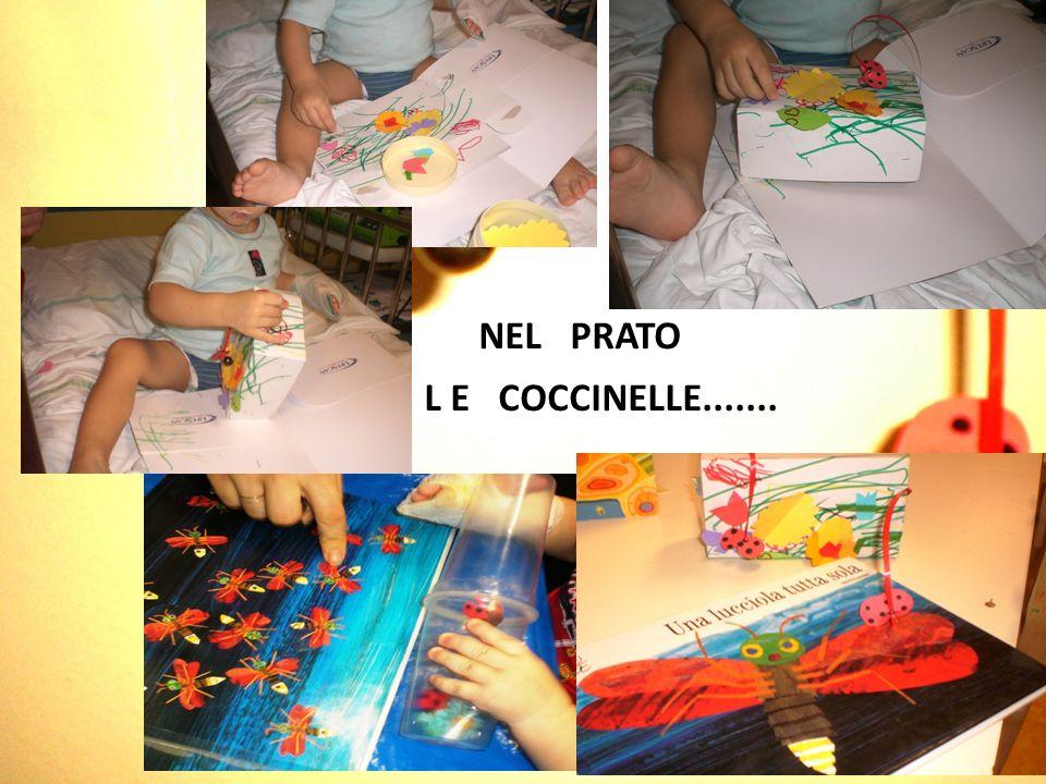 NEL PRATO L E COCCINELLE.......