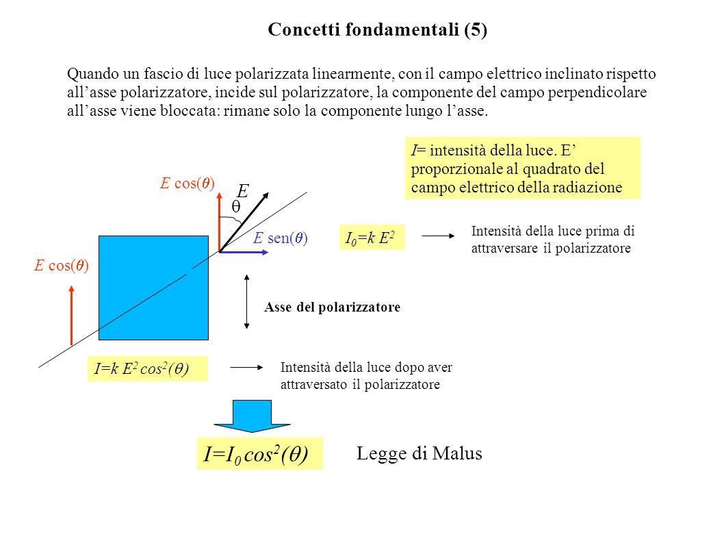 Concetti fondamentali (5) Quando un fascio di luce polarizzata linearmente, con il campo elettrico inclinato rispetto allasse polarizzatore, incide su