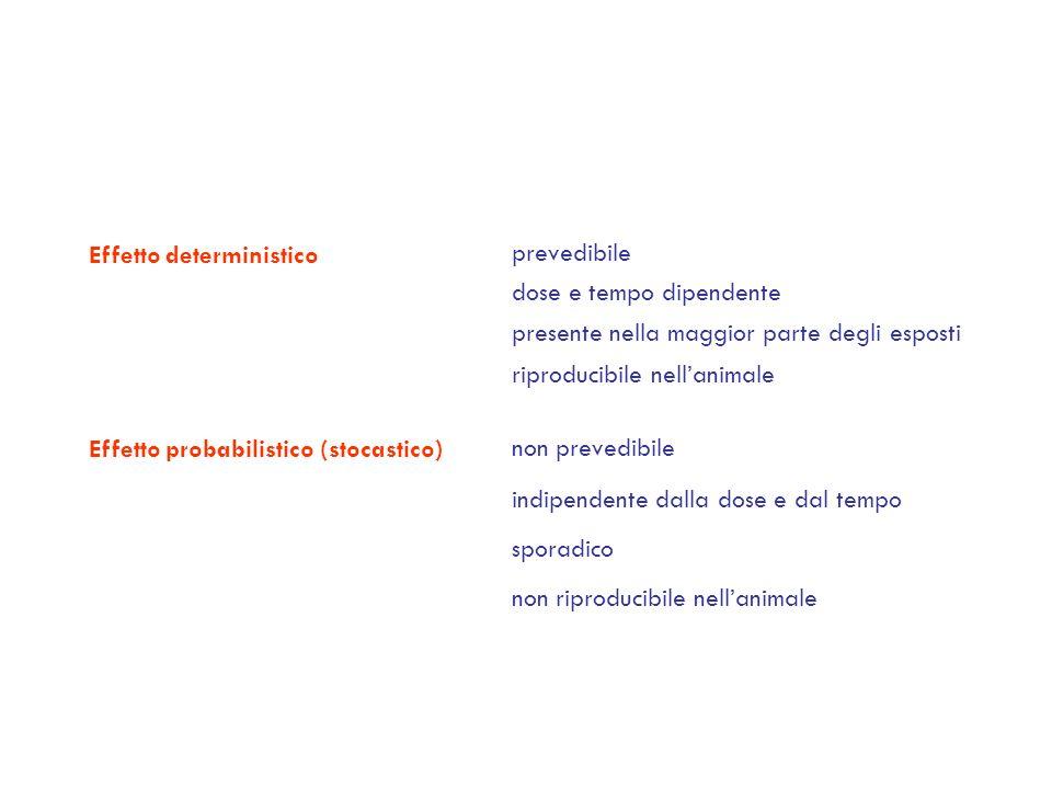 Effetto deterministico Effetto probabilistico (stocastico) prevedibile dose e tempo dipendente presente nella maggior parte degli esposti riproducibil