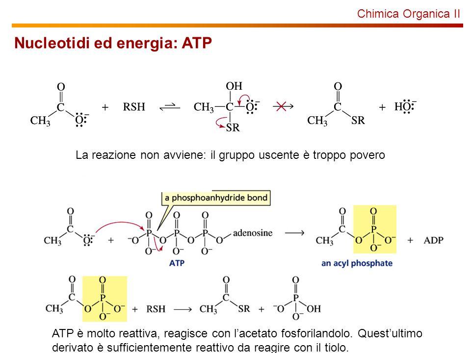Chimica Organica II Nucleotidi ed energia: ATP La reazione non avviene: il gruppo uscente è troppo povero ATP è molto reattiva, reagisce con lacetato