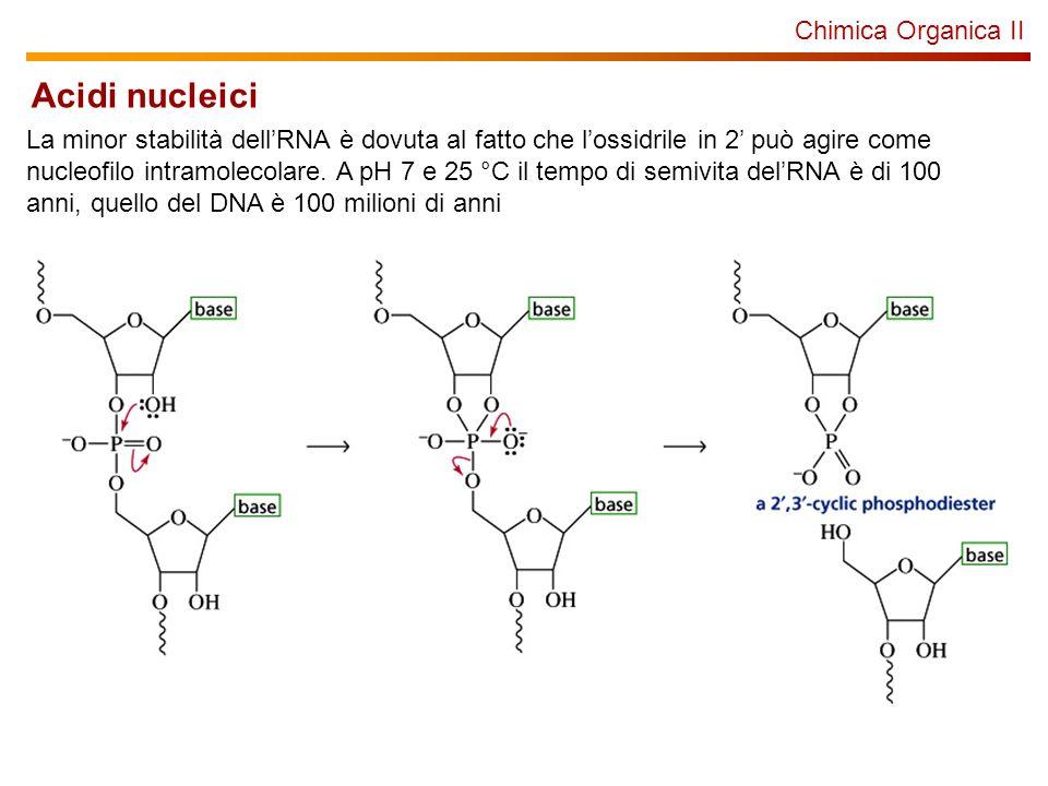 Chimica Organica II Acidi nucleici La minor stabilità dellRNA è dovuta al fatto che lossidrile in 2 può agire come nucleofilo intramolecolare. A pH 7