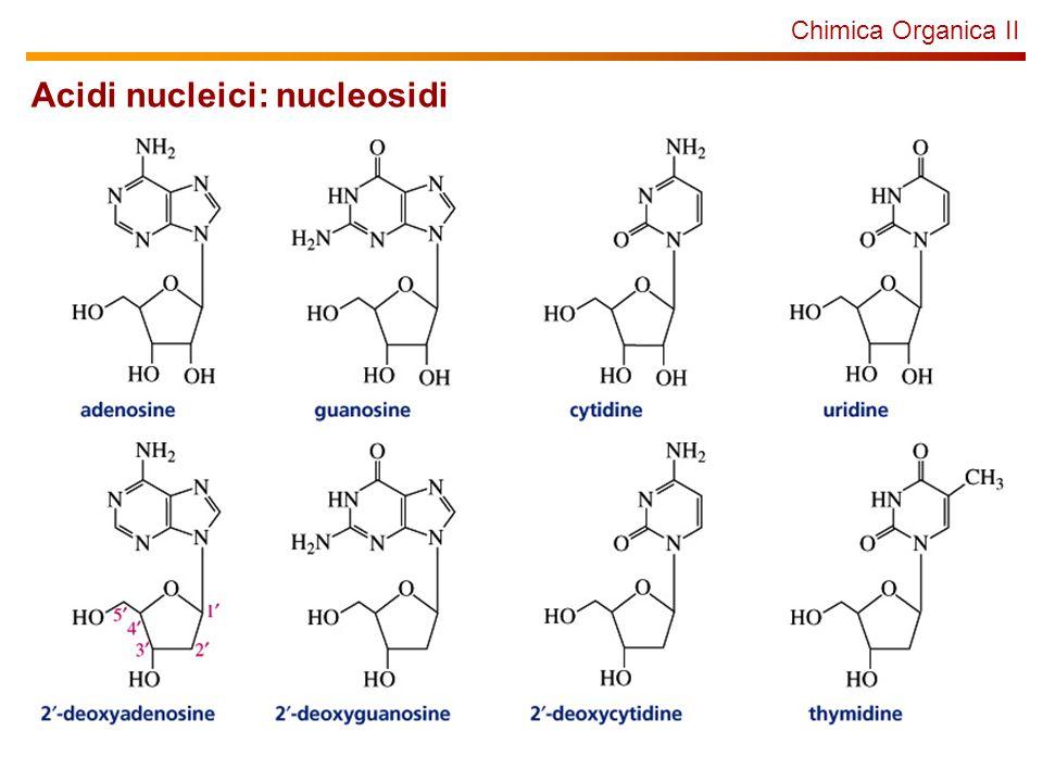 Chimica Organica II Acidi nucleici: nucleosidi