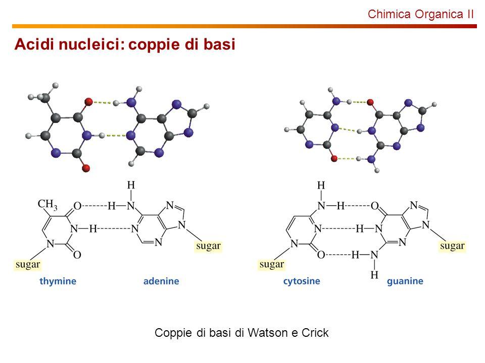 Chimica Organica II Acidi nucleici: coppie di basi Coppie di basi di Watson e Crick