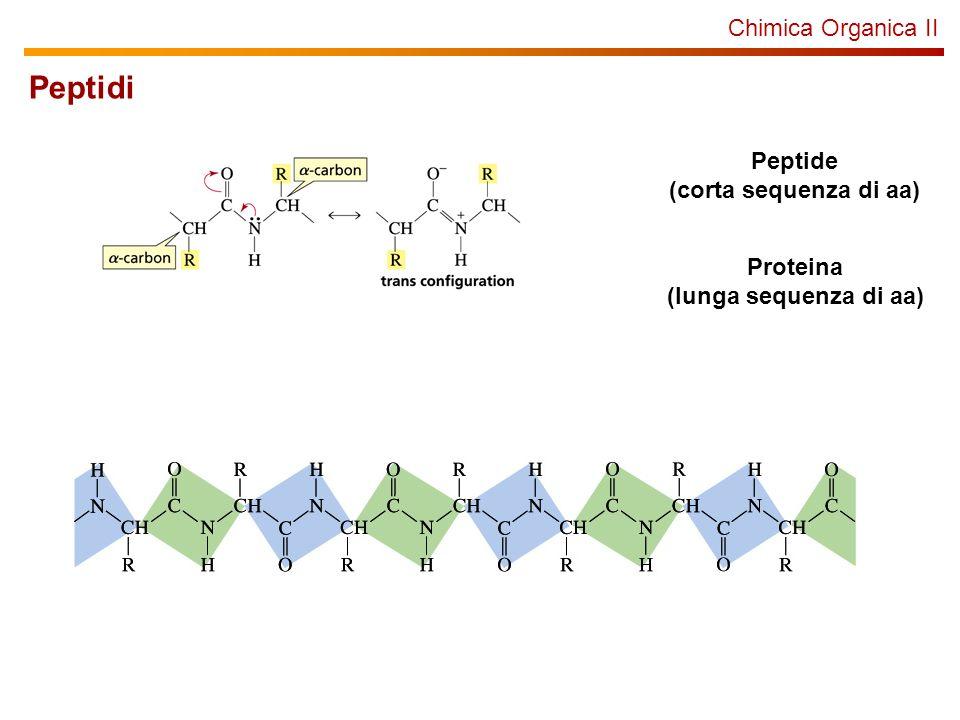 Chimica Organica II Peptide (corta sequenza di aa) Proteina (lunga sequenza di aa) Peptidi