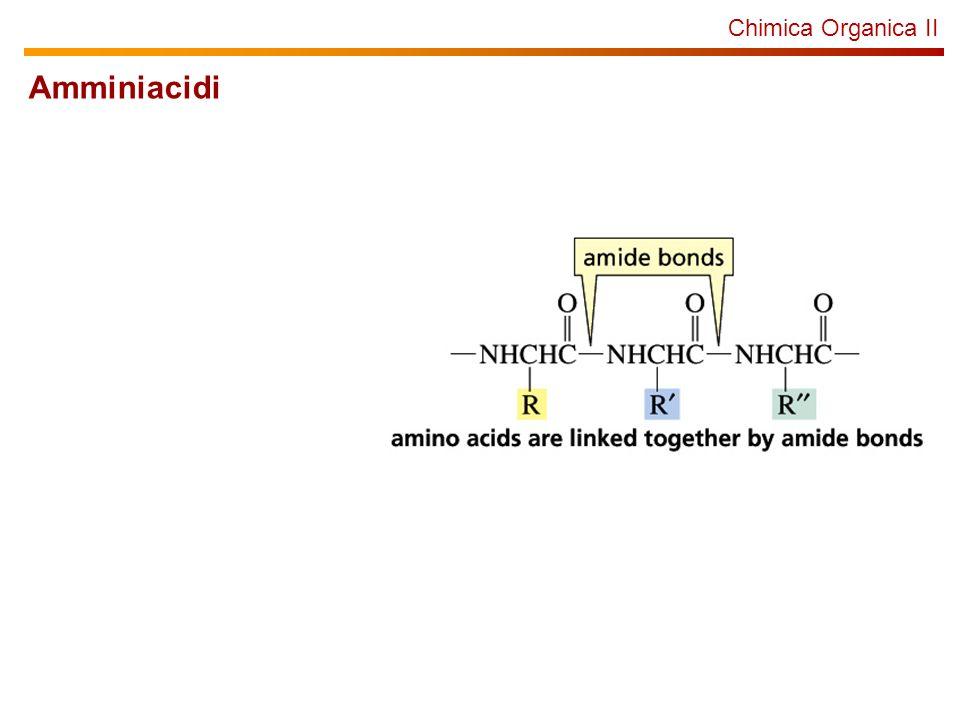 Chimica Organica Struttura secondaria: foglietto- Tra gli amminoacidi che formano la sequenza proteica di formano dei legami a idrogeno che determinano la stabilizzazione di strutture secondarie.