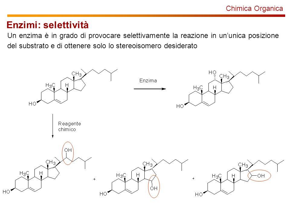Chimica Organica Enzimi: selettività Un enzima è in grado di provocare selettivamente la reazione in ununica posizione del substrato e di ottenere solo lo stereoisomero desiderato