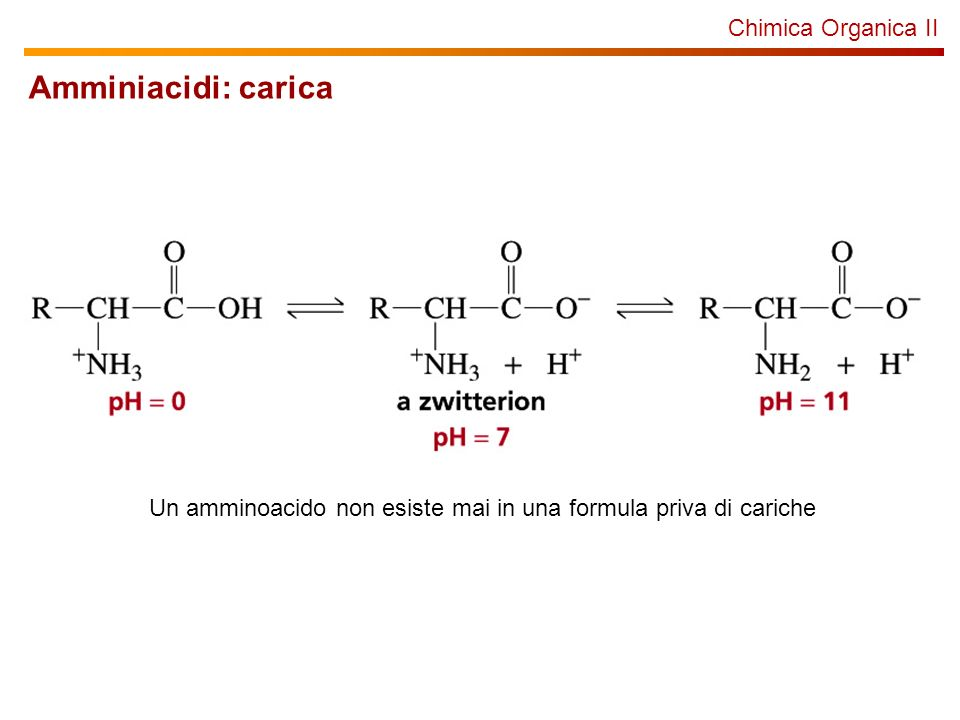 Chimica Organica II Amminiacidi: carica Un amminoacido non esiste mai in una formula priva di cariche