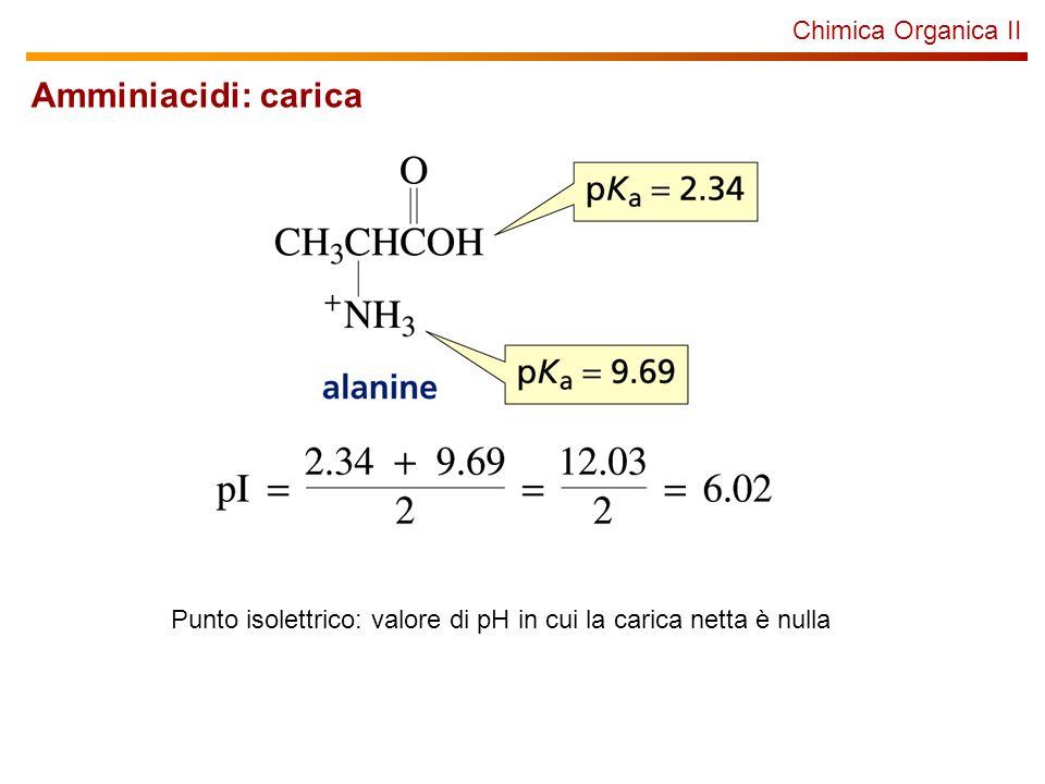 Chimica Organica II Peptidi Le proteine sono macromolecole formate da amminoacidi legati in sequenza attraverso la formazione di gruppi ammidici.