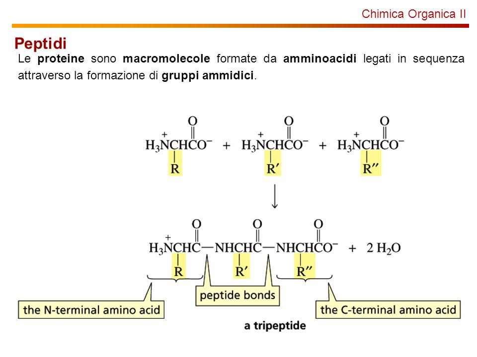 Chimica Organica Proteine: sintesi Sintesi in soluzione: a) sintesi lineare Gly + Lys = GlyLys(50%) GlyLys + Lys = GlyLysLys(50%) GlyLysLys + Pro = GlyLysLysPro(50%) RESA FINALE 12.5% Sintesi in soluzione: a) sintesi convergente (condensazione di frammenti) Gly + Lys = GlyLys(50%) Lys + Pro = LysPro(50%) GlyLys + LysPro = GlyLysLysPro(50%) RESA FINALE 25% Ogni step può richiedere una purificazione, una deprotezione e unaltra purificazione.