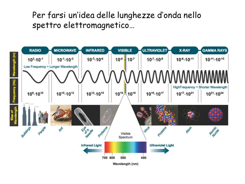 Per farsi unidea delle lunghezze donda nello spettro elettromagnetico…