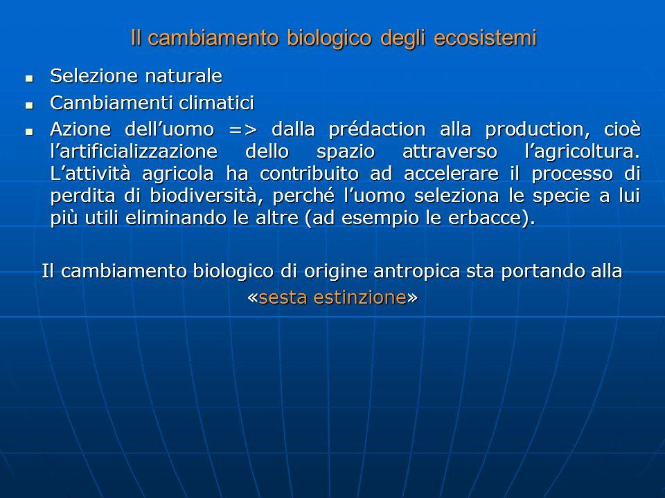 Il cambiamento biologico degli ecosistemi Selezione naturale Selezione naturale Cambiamenti climatici Cambiamenti climatici Azione delluomo => dalla p