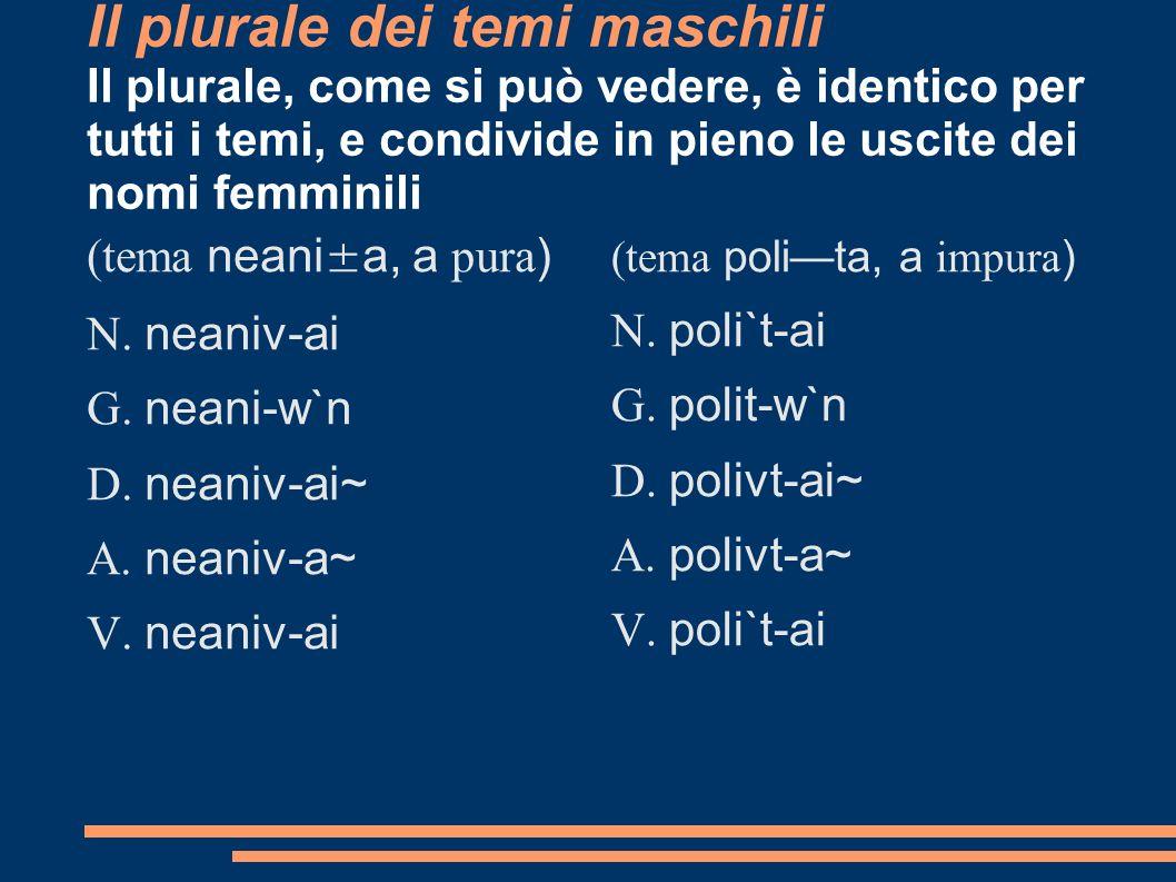 Il plurale dei temi maschili Il plurale, come si può vedere, è identico per tutti i temi, e condivide in pieno le uscite dei nomi femminili (tema nean