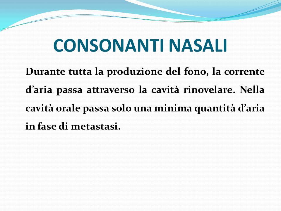 CONSONANTI NASALI Durante tutta la produzione del fono, la corrente daria passa attraverso la cavità rinovelare. Nella cavità orale passa solo una min