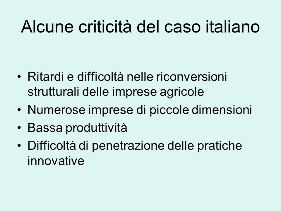 Alcune criticità del caso italiano Ritardi e difficoltà nelle riconversioni strutturali delle imprese agricole Numerose imprese di piccole dimensioni Bassa produttività Difficoltà di penetrazione delle pratiche innovative
