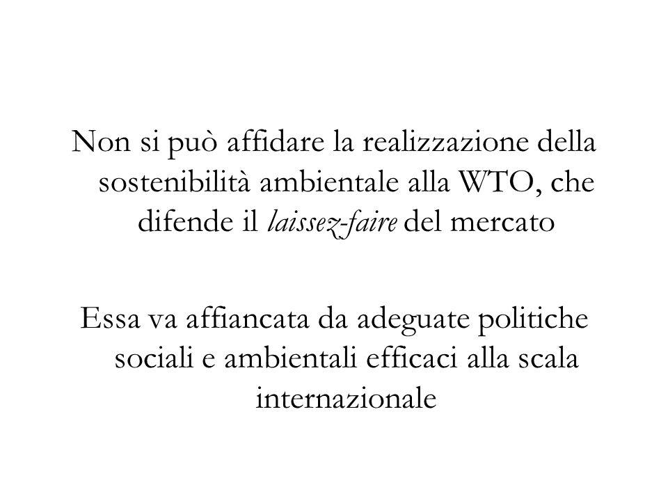 Non si può affidare la realizzazione della sostenibilità ambientale alla WTO, che difende il laissez-faire del mercato Essa va affiancata da adeguate politiche sociali e ambientali efficaci alla scala internazionale