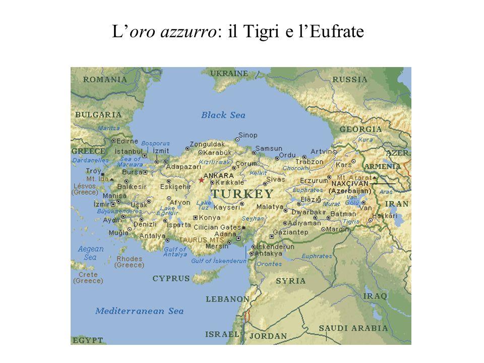 Il Great Anatolian Project -A fine anni Settanta la progettazione -7 progetti idraulici per il bacino dellEufrate e 6 per quello del Tigri -22 dighe e 19 centrali idroelettriche -Formazione di grandi laghi in una zona altamente sismica -La perdita di siti archeologici: Hasankeyf