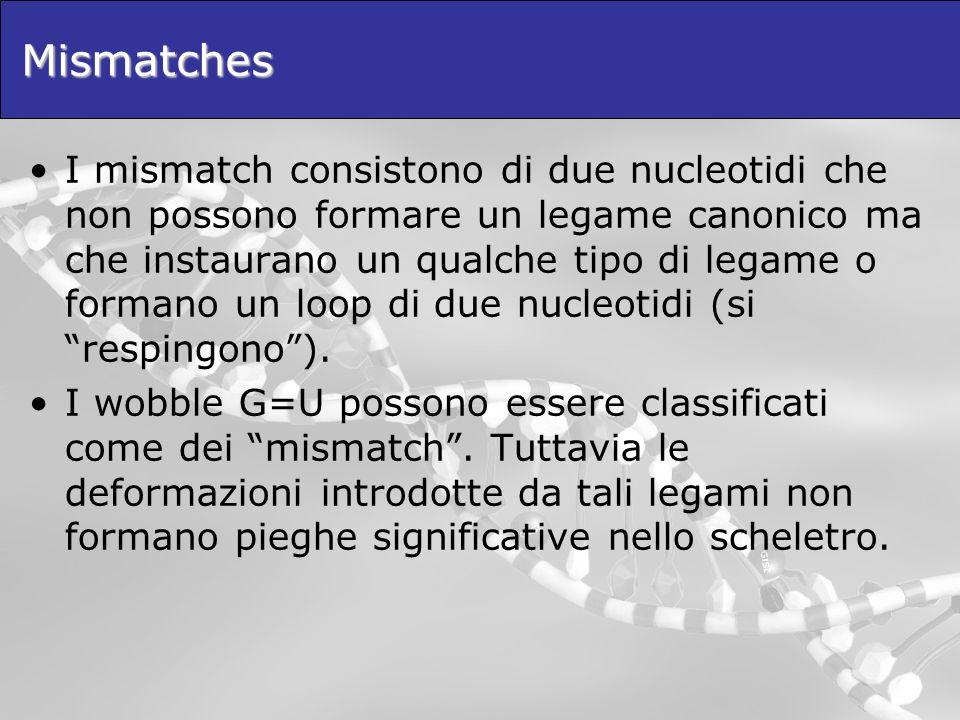 Mismatches I mismatch consistono di due nucleotidi che non possono formare un legame canonico ma che instaurano un qualche tipo di legame o formano un