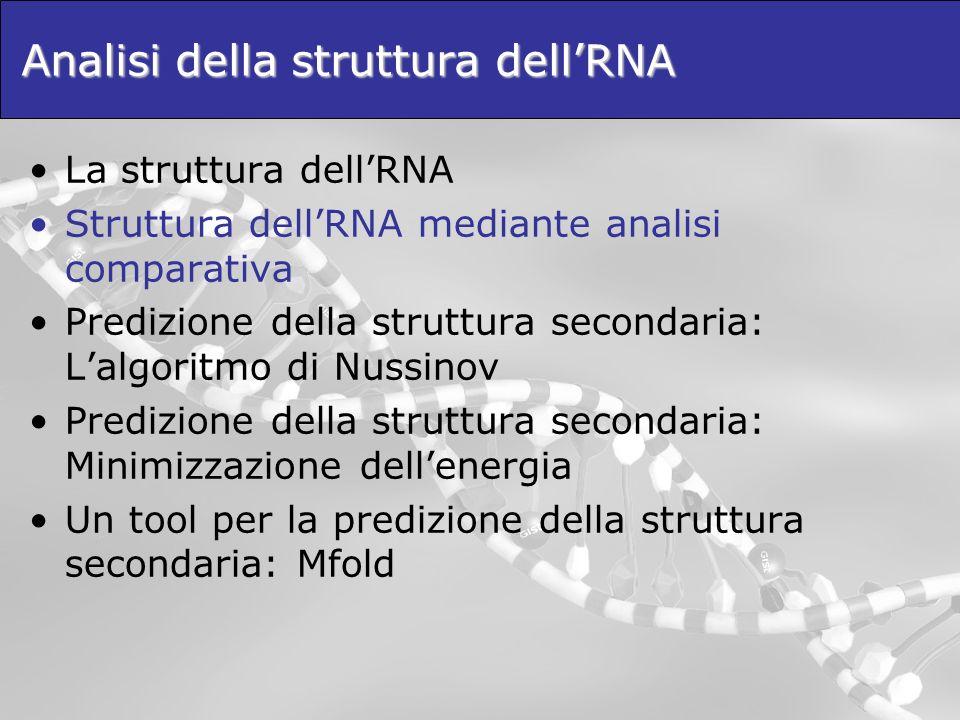 Analisi della struttura dellRNA La struttura dellRNA Struttura dellRNA mediante analisi comparativa Predizione della struttura secondaria: Lalgoritmo