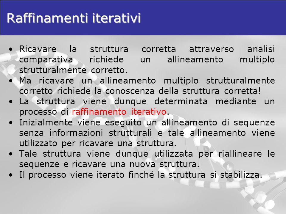 Raffinamenti iterativi Ricavare la struttura corretta attraverso analisi comparativa richiede un allineamento multiplo strutturalmente corretto. Ma ri