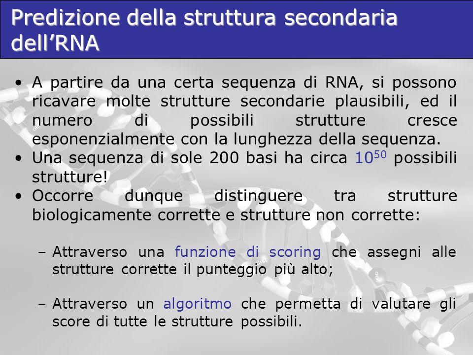 Predizione della struttura secondaria dellRNA A partire da una certa sequenza di RNA, si possono ricavare molte strutture secondarie plausibili, ed il
