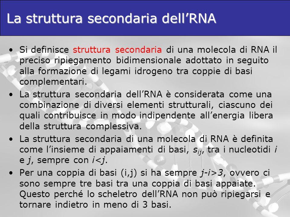 La struttura secondaria dellRNA Si definisce struttura secondaria di una molecola di RNA il preciso ripiegamento bidimensionale adottato in seguito al