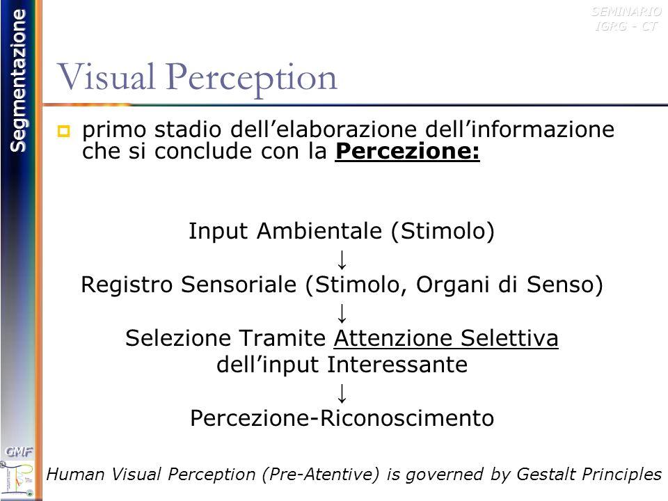 Segmentazione GMFGMFSEMINARIO IGRG - CT Gestalt Principles of Visual Organization Figura e sfondo Prossimità Chiusura Continuazione Similarità Comune Destino Parallelismo Regione Comune Simmetria