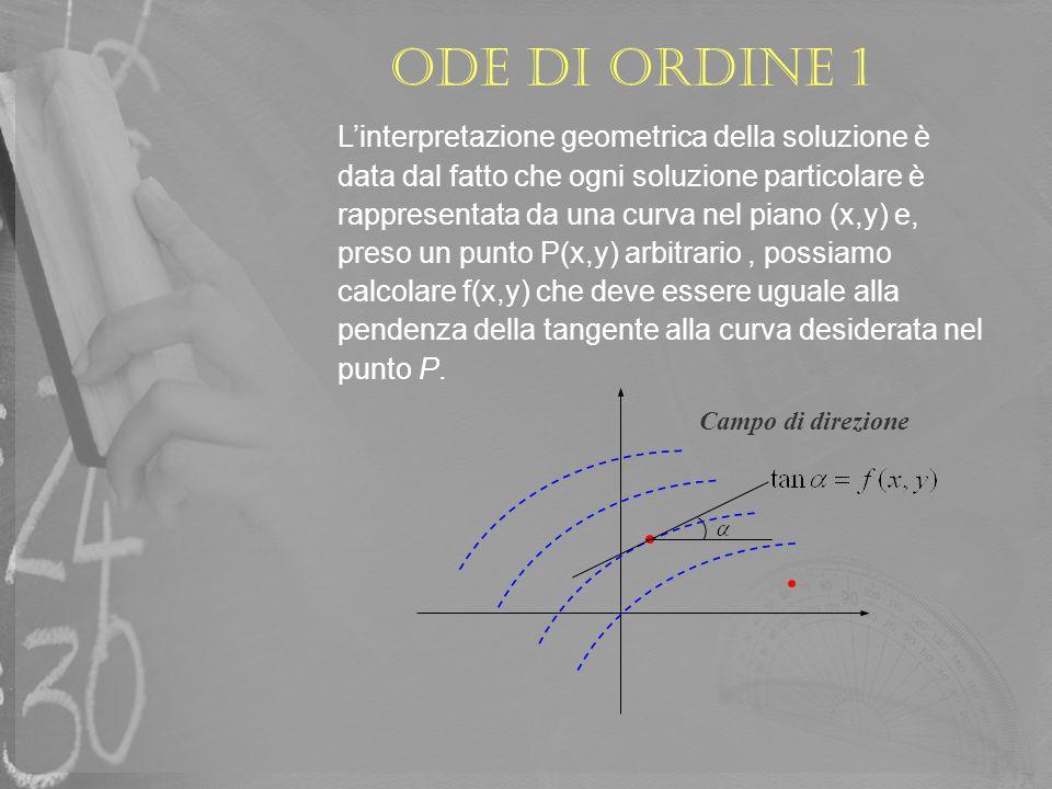 ODE di ordine 1 Linterpretazione geometrica della soluzione è data dal fatto che ogni soluzione particolare è rappresentata da una curva nel piano (x,