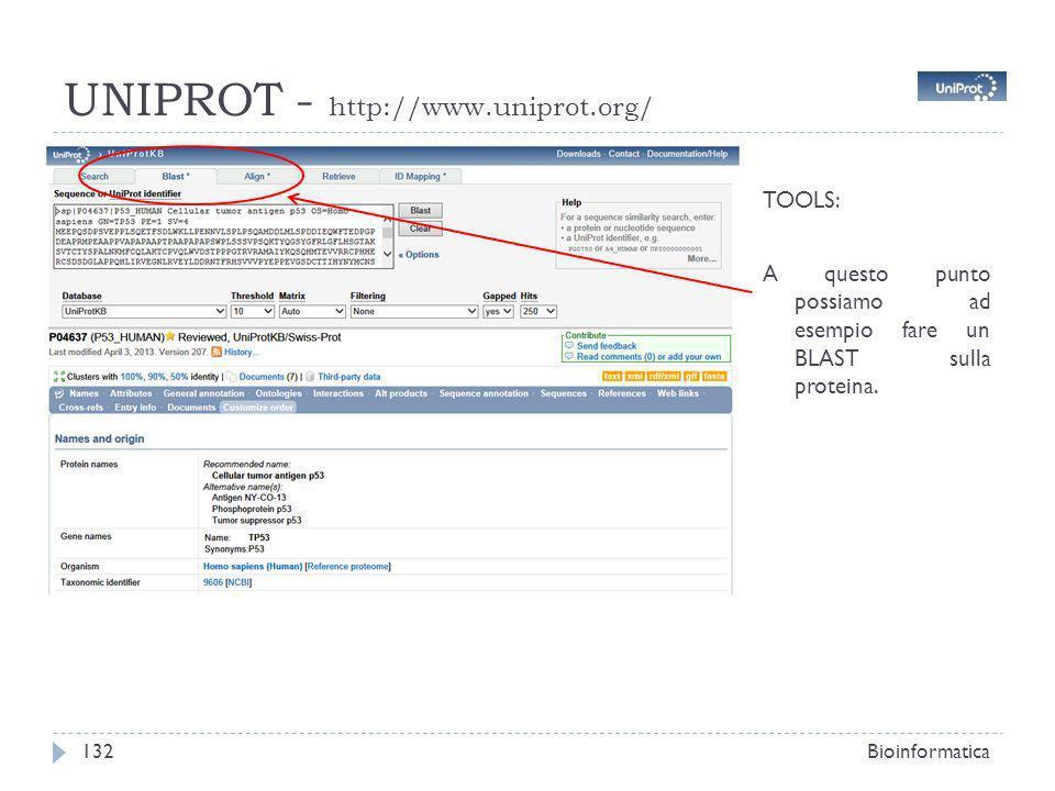 UNIPROT - http://www.uniprot.org/ Bioinformatica132 TOOLS: A questo punto possiamo ad esempio fare un BLAST sulla proteina.
