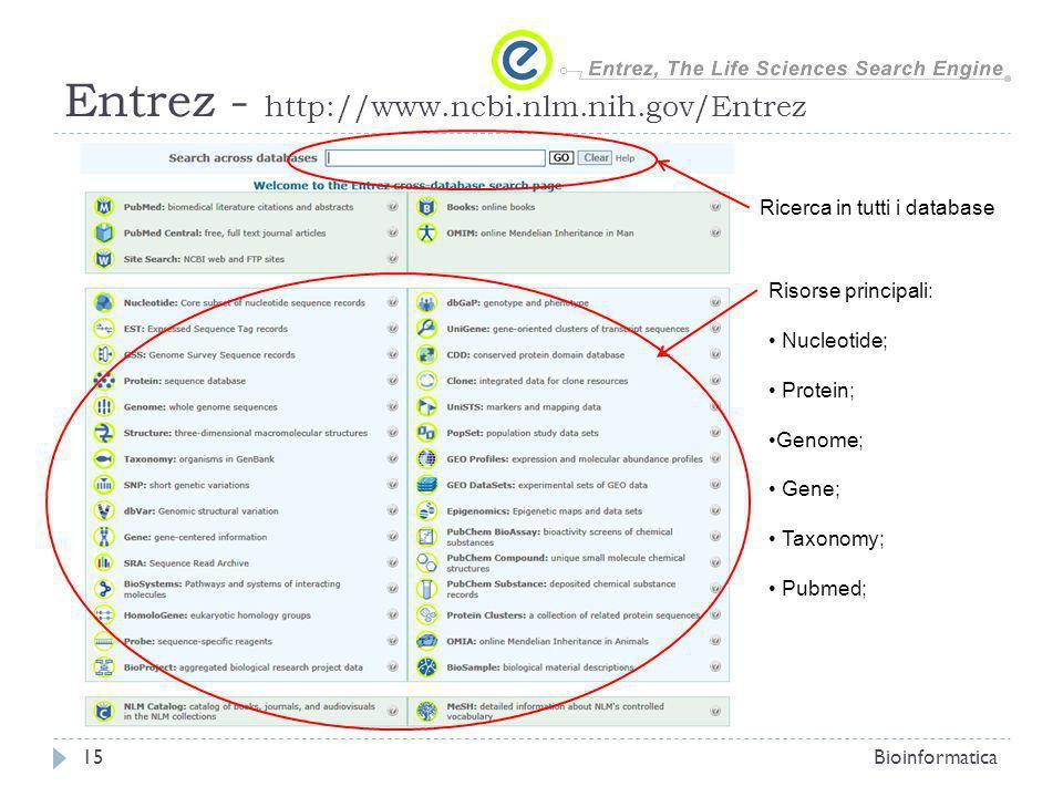 Entrez - http://www.ncbi.nlm.nih.gov/Entrez Bioinformatica15 Ricerca in tutti i database Risorse principali: Nucleotide; Protein; Genome; Gene; Taxonomy; Pubmed;