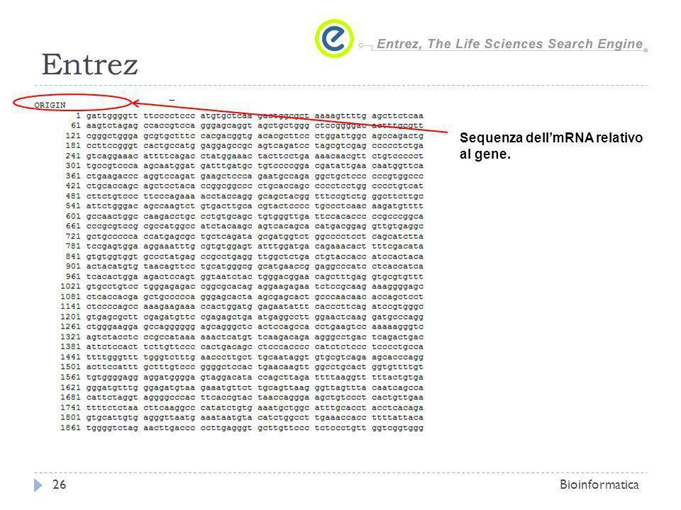 Entrez Bioinformatica26 Sequenza dellmRNA relativo al gene.