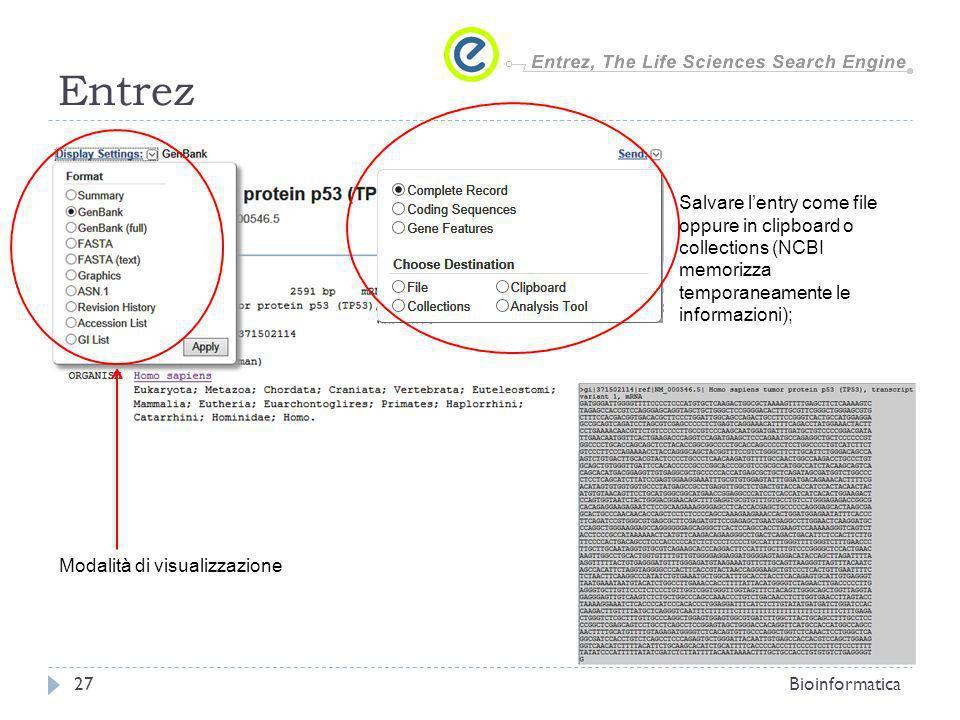 Entrez Bioinformatica27 Salvare lentry come file oppure in clipboard o collections (NCBI memorizza temporaneamente le informazioni); Modalità di visualizzazione
