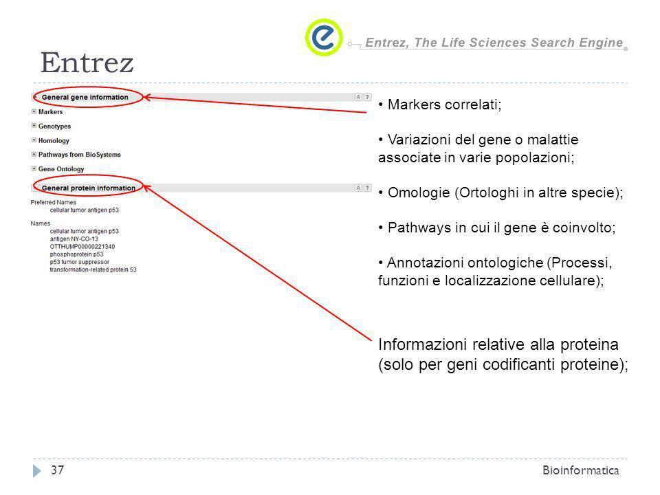 Entrez Bioinformatica37 Markers correlati; Variazioni del gene o malattie associate in varie popolazioni; Omologie (Ortologhi in altre specie); Pathwa