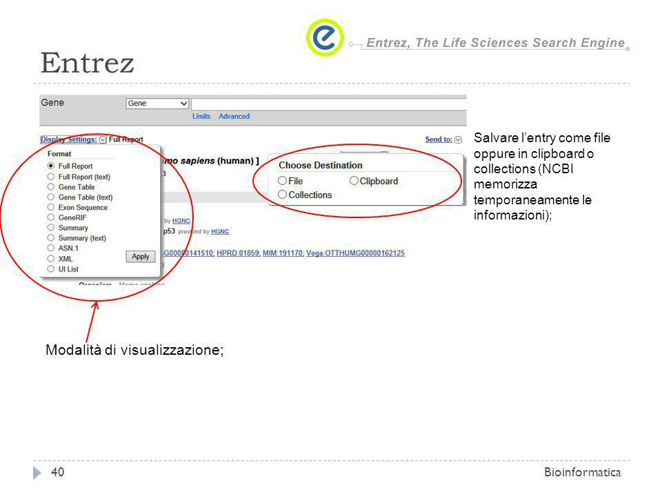 Entrez Bioinformatica40 Modalità di visualizzazione; Salvare lentry come file oppure in clipboard o collections (NCBI memorizza temporaneamente le informazioni);