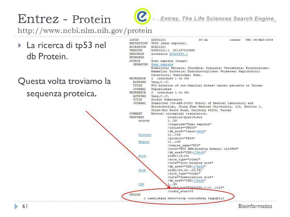 La ricerca di tp53 nel db Protein. Questa volta troviamo la sequenza proteica. Bioinformatica61 Entrez - Protein http://www.ncbi.nlm.nih.gov/protein