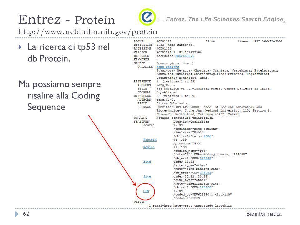 La ricerca di tp53 nel db Protein. Ma possiamo sempre risalire alla Coding Sequence Bioinformatica62 Entrez - Protein http://www.ncbi.nlm.nih.gov/prot