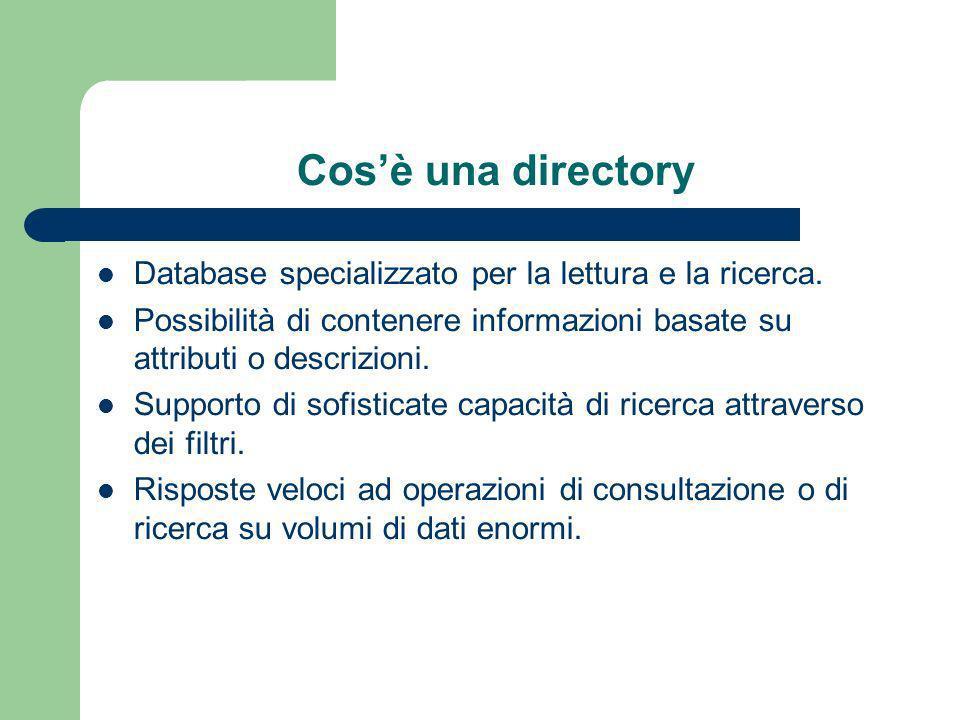 Cosè una directory Database specializzato per la lettura e la ricerca.