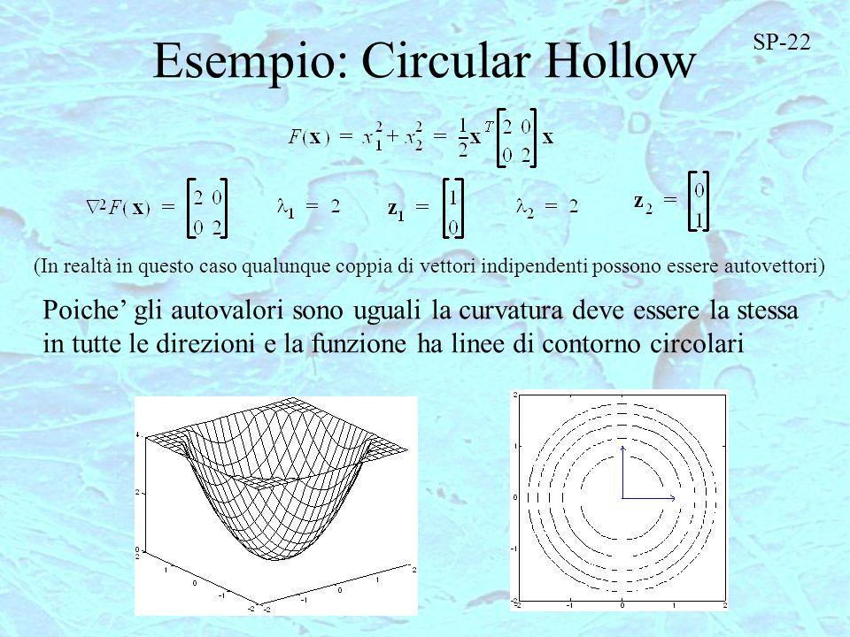 Esempio: Circular Hollow (In realtà in questo caso qualunque coppia di vettori indipendenti possono essere autovettori) Poiche gli autovalori sono ugu
