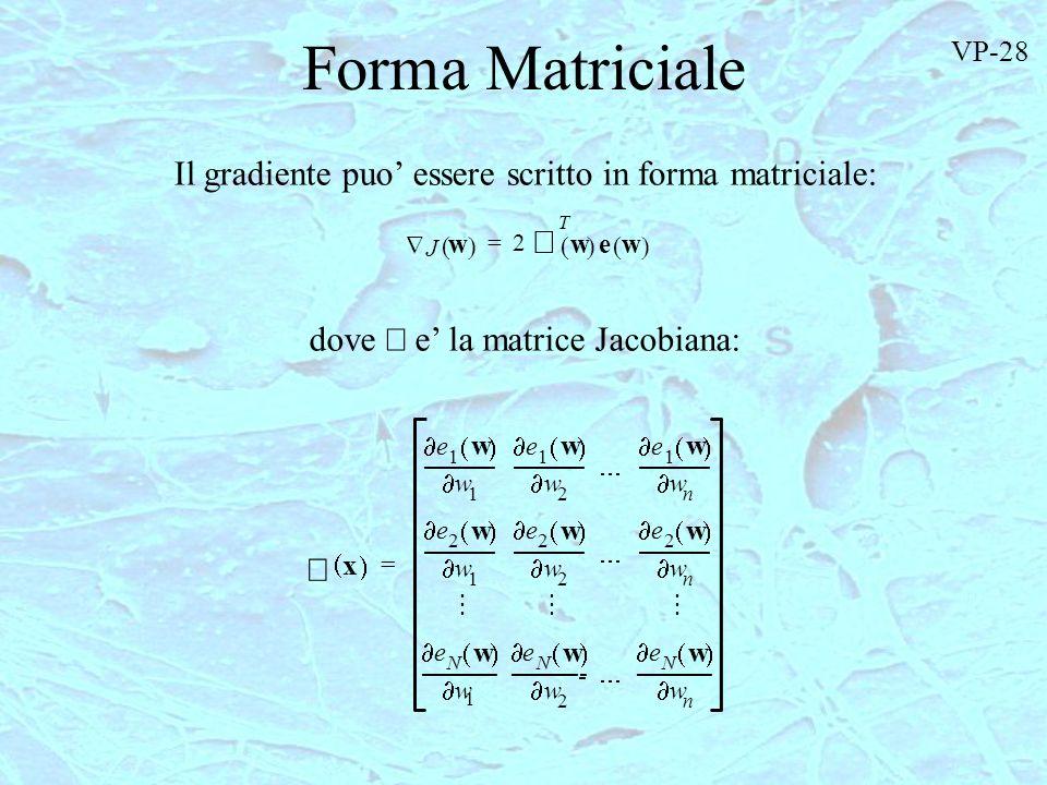Forma Matriciale J w 2 T w ew = Il gradiente puo essere scritto in forma matriciale: dove e la matrice Jacobiana: ---- --- x e 1 w 1 w --------- e 1 w