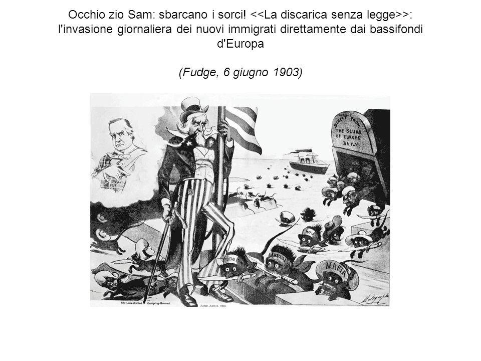 Occhio zio Sam: sbarcano i sorci! >: l'invasione giornaliera dei nuovi immigrati direttamente dai bassifondi d'Europa (Fudge, 6 giugno 1903)