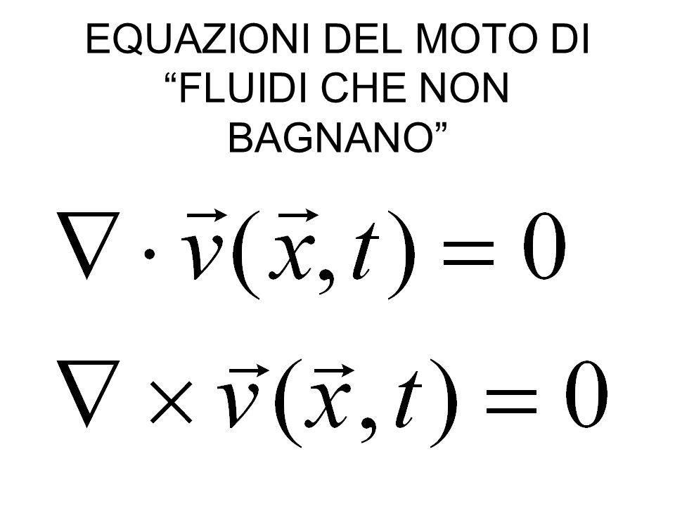 EQUAZIONI DEL MOTO DI FLUIDI CHE NON BAGNANO