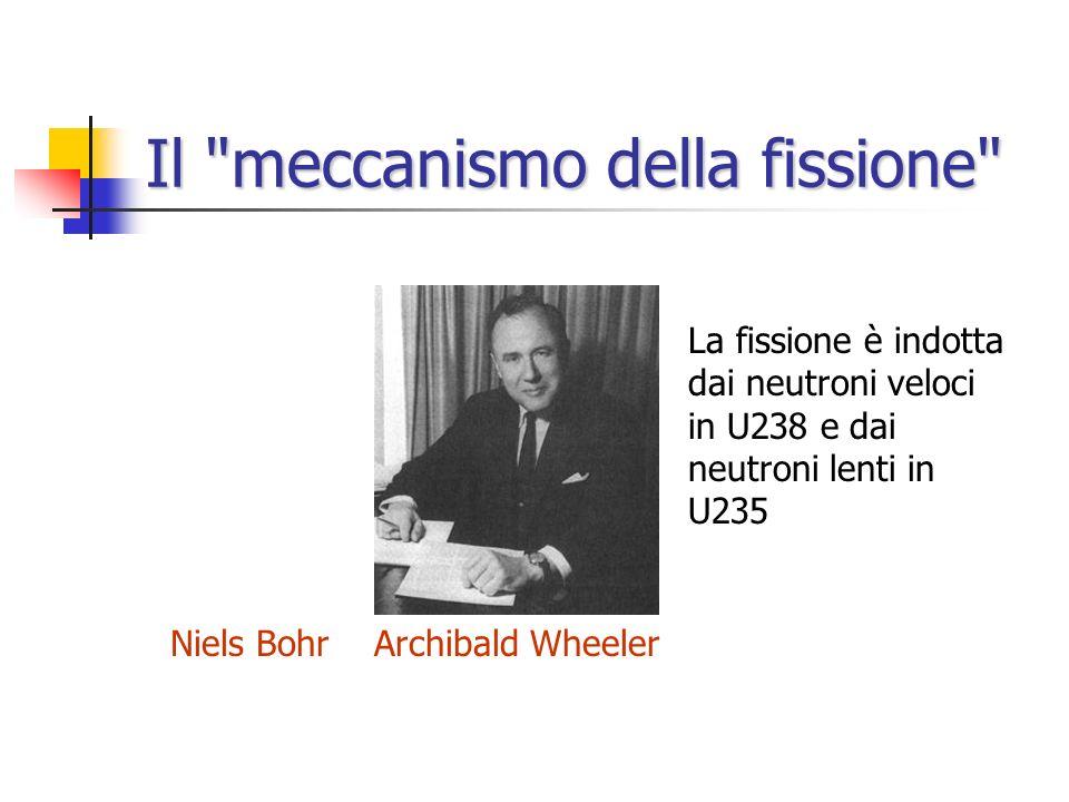 La notizia arriva in America 1 2 3 4 5 1.M. Tuve 2.E. Fermi 3.N. Bohr 4.G. Breit 5.J. Fleming Atomic Physics Observatory Department of Terrestrial Mag