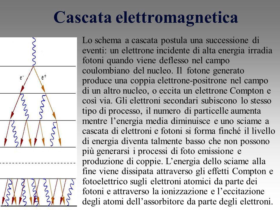Cascata elettromagnetica Lo schema a cascata postula una successione di eventi: un elettrone incidente di alta energia irradia fotoni quando viene deflesso nel campo coulombiano del nucleo.