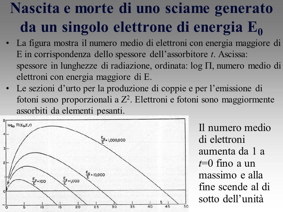 Nascita e morte di uno sciame generato da un singolo elettrone di energia E 0 La figura mostra il numero medio di elettroni con energia maggiore di E in corrispondenza dello spessore dellassorbitore t.