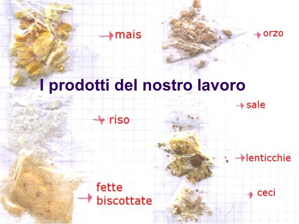 I prodotti del nostro lavoro