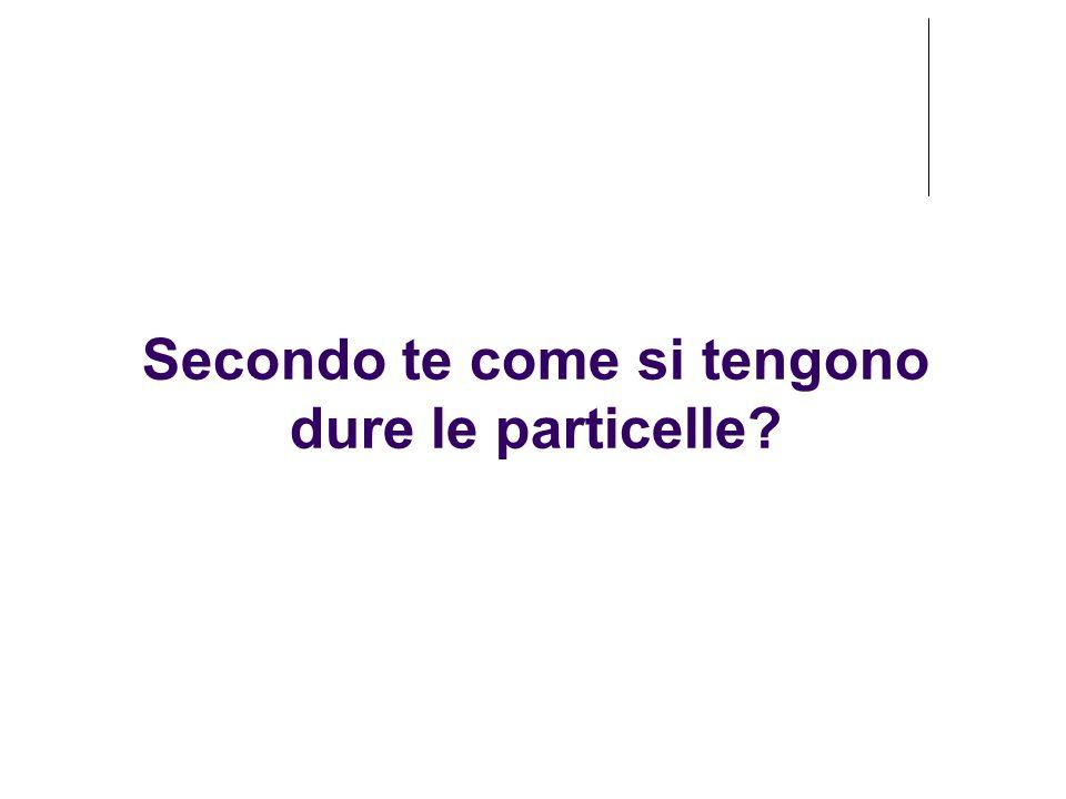 Secondo te come si tengono dure le particelle?
