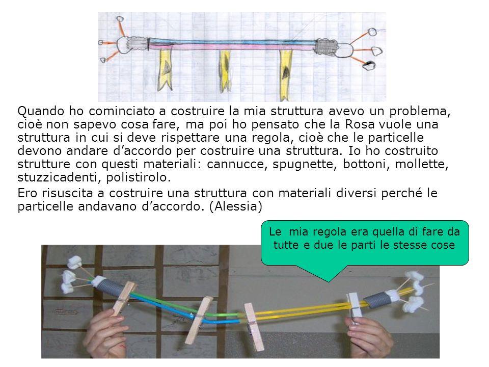 Quando ho cominciato a costruire la mia struttura avevo un problema, cioè non sapevo cosa fare, ma poi ho pensato che la Rosa vuole una struttura in c